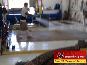 RugCleaning (24)